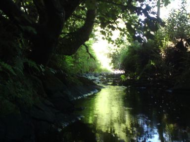 Ballymoyer River taken by Dad